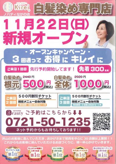 20201124120329041_01